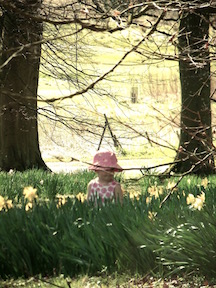 Photo of little girl in pink hat in the woods