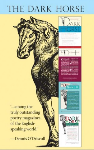 This is a poster/banner for The Dark Horse magazine, feating a giant horse looking round four covers of back issues, one on top of the next. You see the characteristic design of the magazine, and there's a big quote from the late Dennis O'Driscoll bottom left saying 'among the trully outstanding poetry mgazines of the English-speaking world'
